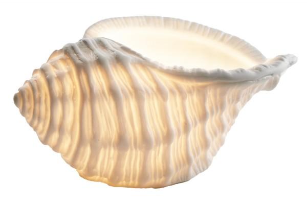Teelichtlampe Muschel