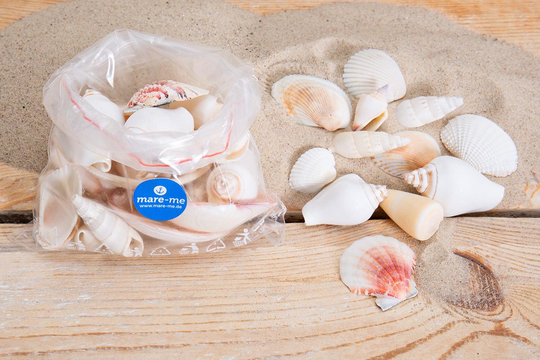 Muschelmix wei zum dekorieren kaufen mare me maritime - Holzpaddel deko ...