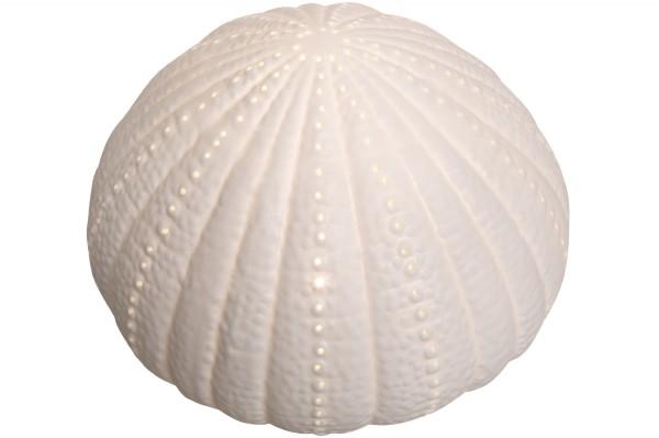 Lampe Seeigel