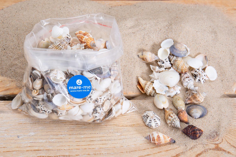 Muschelmix bunt online kaufen mare me maritime dekoration geschenke - Holzpaddel deko ...